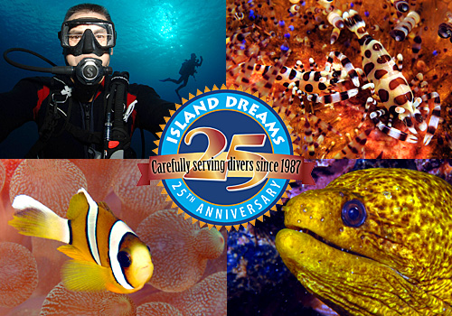 cozumel caribbean pacific scuba travel diving vacations