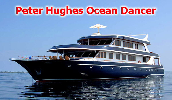 Peter Hughes M/V Ocean Dancer live-aboard - Maldives Report and Photos copyright Ken Knezick, Island Dreams