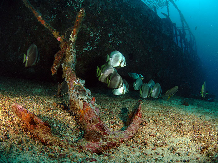 Wreck of the Alma Jane - copyright Ken Knezick, Island Dreams
