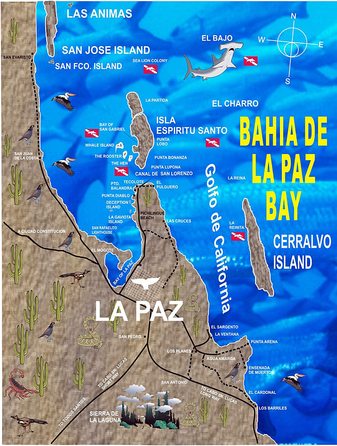 Map of La Paz Bay, Mexico