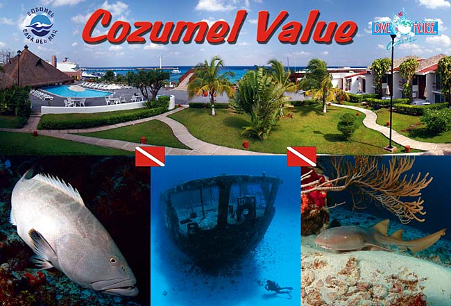 Casa del Mar Hotel Cozumel Mexico Dive Resort