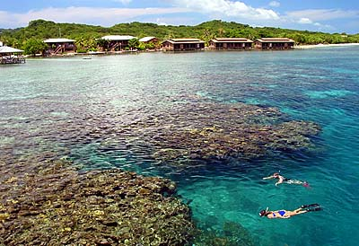 Scuba diving in Roatan reefs - Courtesy of www.divetrip.com