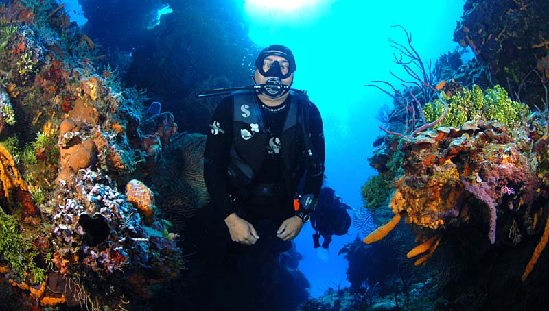 Cozumel Wall Dive with Dive House's Juan Leca - Copyright Ken Knezick