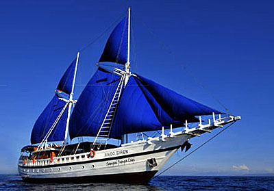 Indo Siren group tour to Komodo
