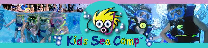Kids Sea Camp Logo