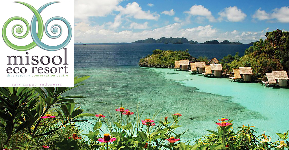 Misool eco resort raja ampat indonesia scuba diving adventure - Raja ampat dive resort reviews ...