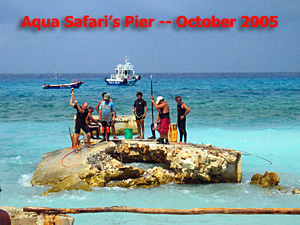 A Survivor's Hurricane Wilma Report -- Text and photos by Sheryl Shea of Aqua Safari Cozumel