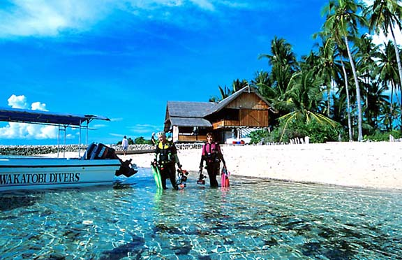 Wakatobi Resort -- Recent Guest Comments